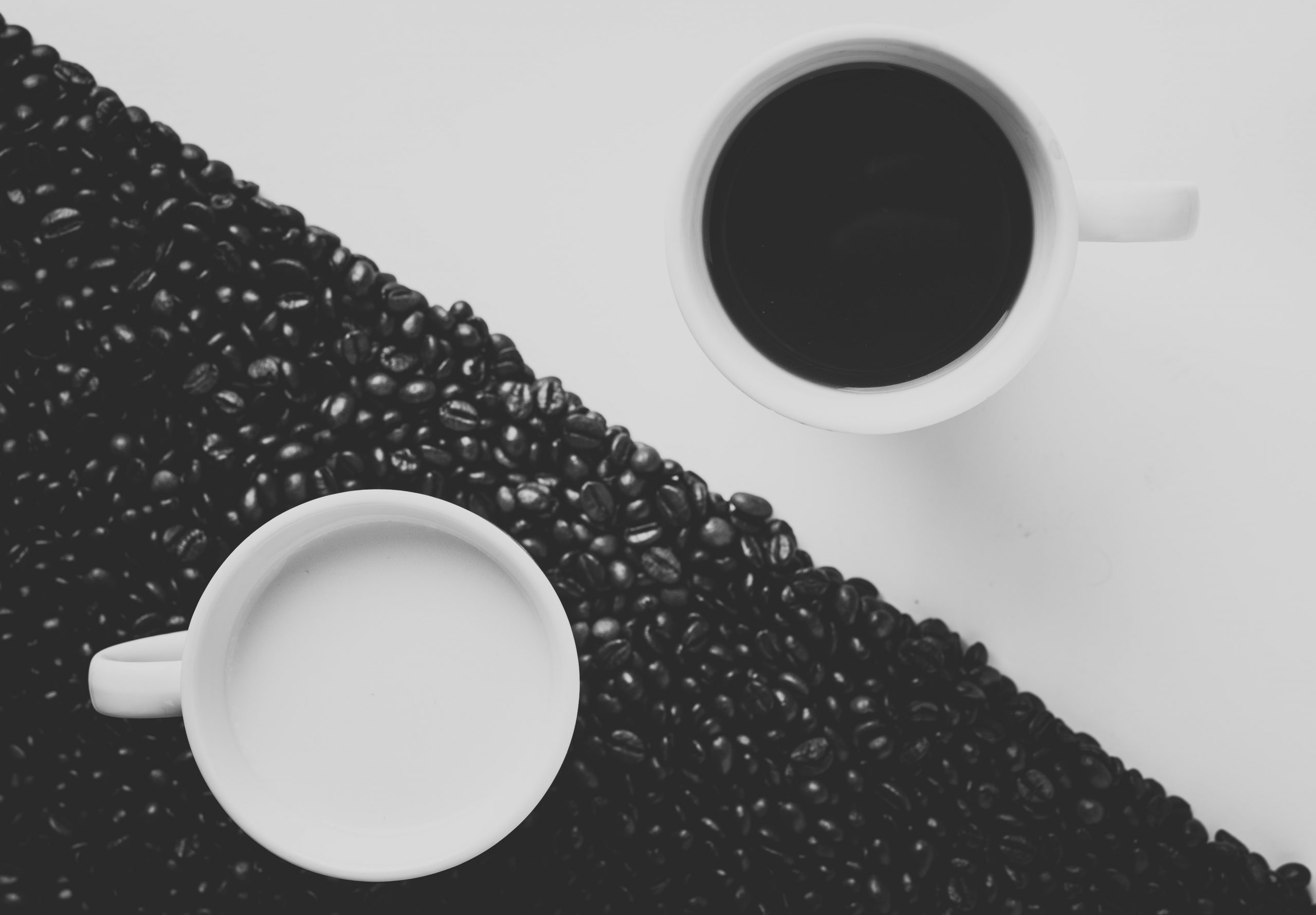 You are currently viewing [Podcast] : Yin, Yang & Entrepreneuriat