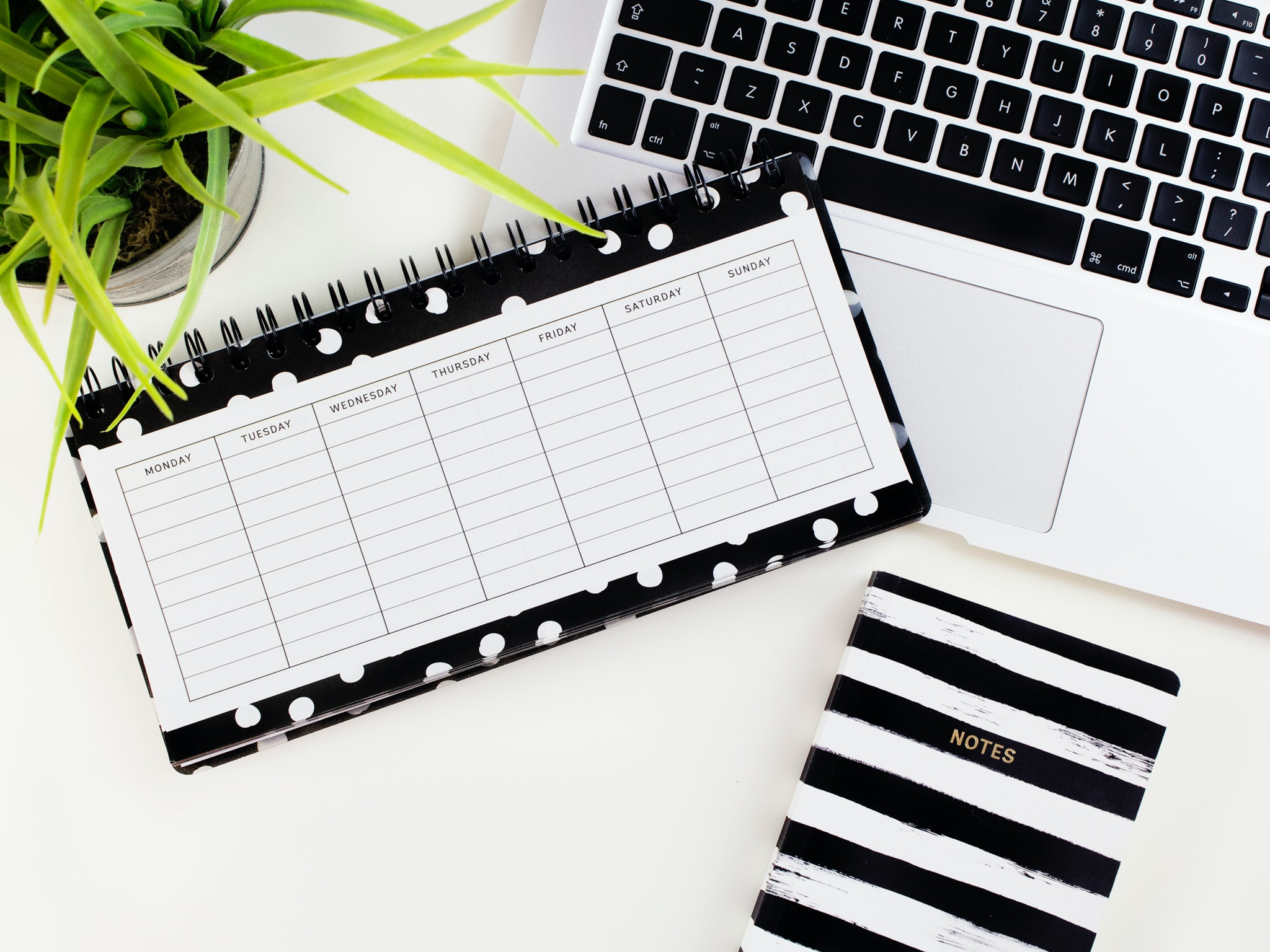 You are currently viewing [Podcast] : La procrastination, pourquoi je procrastine ?