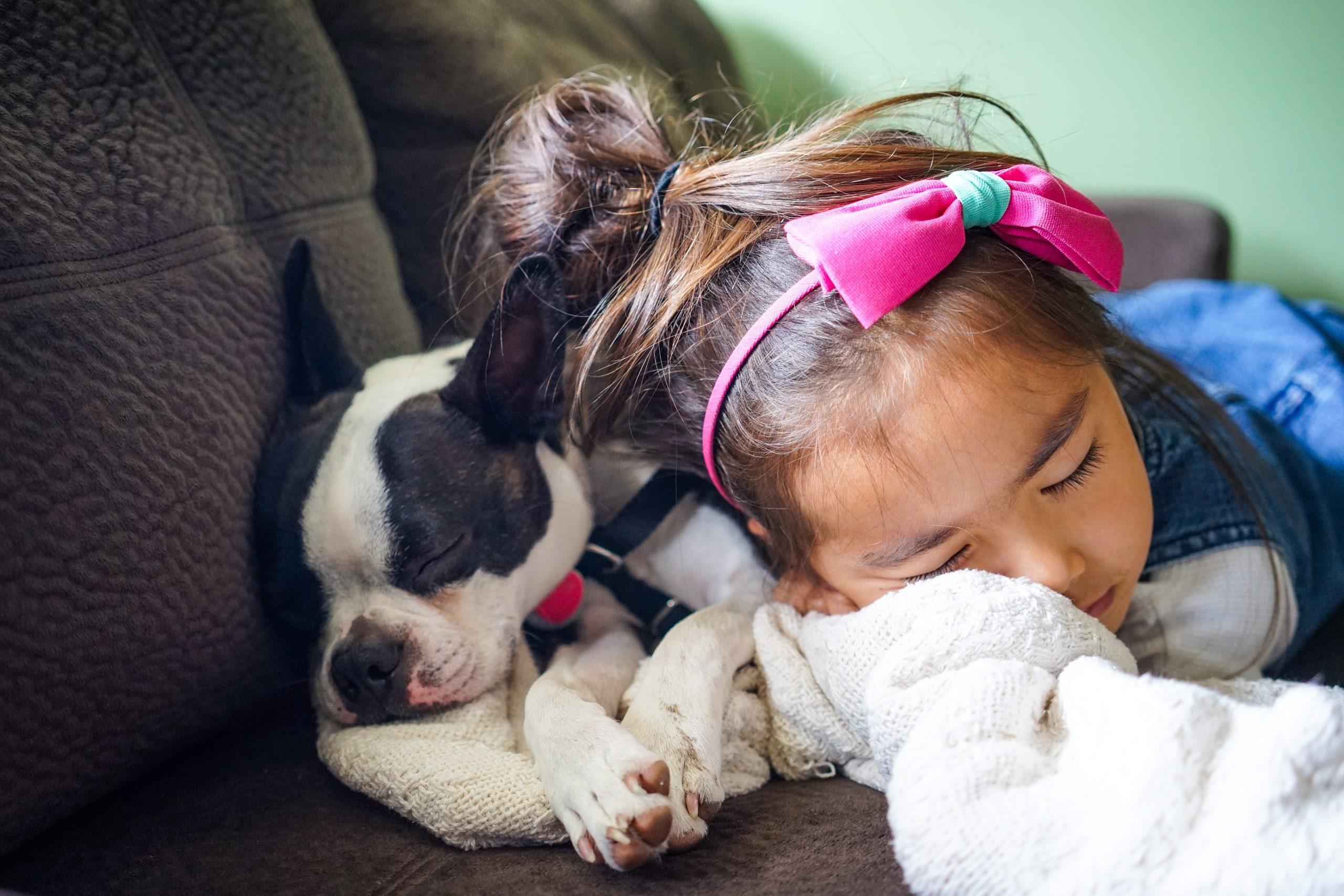 Dans une maison, les chiens et les enfants savent toujours tout